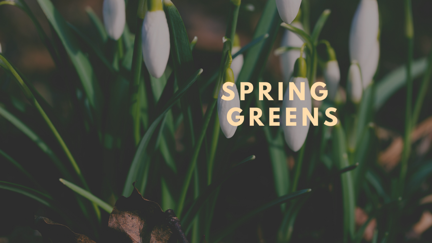 Turning your Spring Green